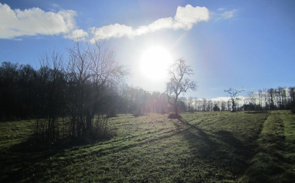 Januar-Channeling - Im Rhythmus des Seins